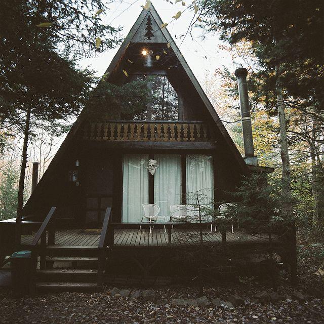 Дом в лесу: проект