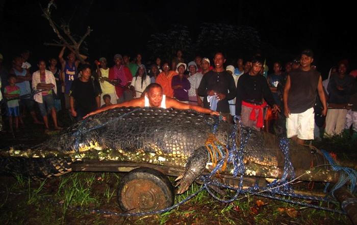 Лолонг - самый большой крокодил